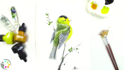 Spring bird painting with watercolors.